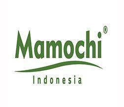 Lowongan Kerja Graphic Designer – Video Editor di Mamochi Indonesia - Yogyakarta