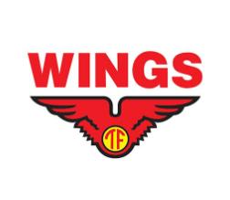 Lowongan Kerja Driver Ekspedisi – Driver Three Wheeler (VIAR) – Sales Motorist – Comber Retail di PT. Cipta Karya Agung Abadi (Wings Group) - Yogyakarta